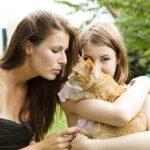 alergia na psy i koty
