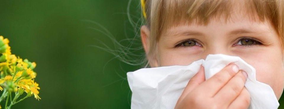 odczulanie alergenów