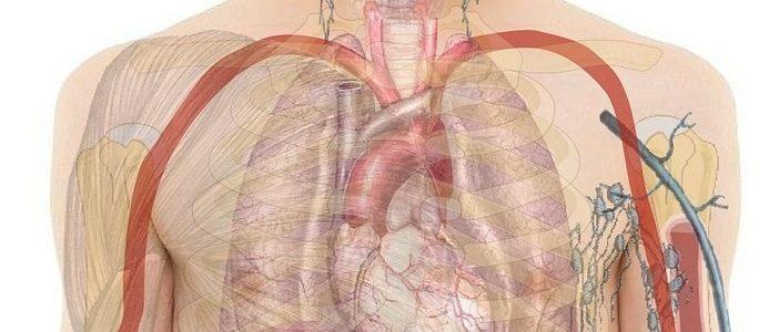 Pasożyty – diagnostyka i eliminacja