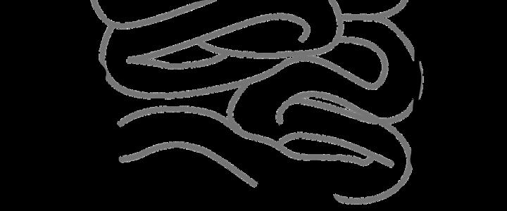 Choroba Leśniowskiego Crohna